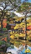 Обогреватель пленочный на стену «Японский сад (сад Киото)» (уценка)